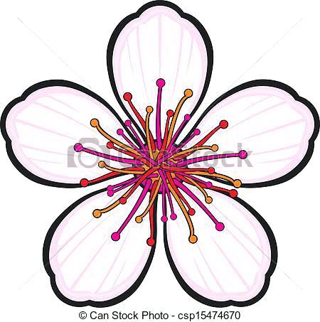 450x453 Cherry Blossom Drawing Oakeydoak