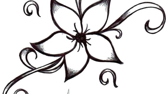 570x320 Black White Flower Drawings Tulip Flower Drawing Black And White