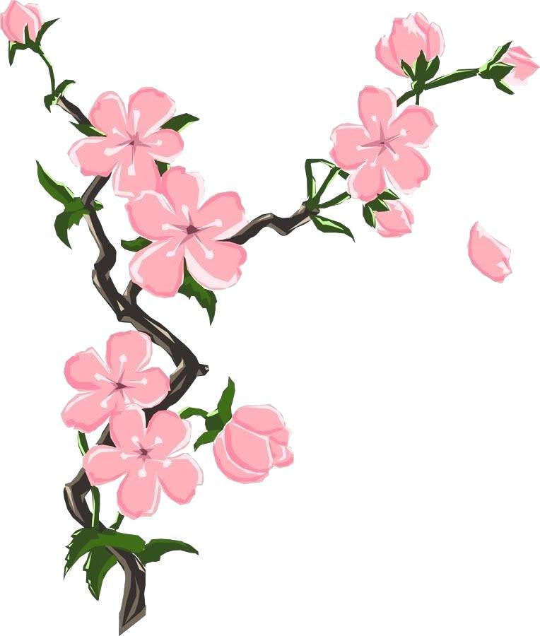 764x900 Blossom Drawing