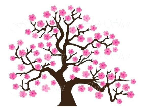 570x440 Cherry Blossom Tree Best House Luxury