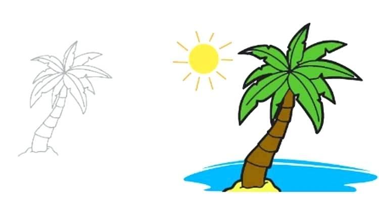 750x408 palm trees drawings palm trees set palm tree drawings clipart