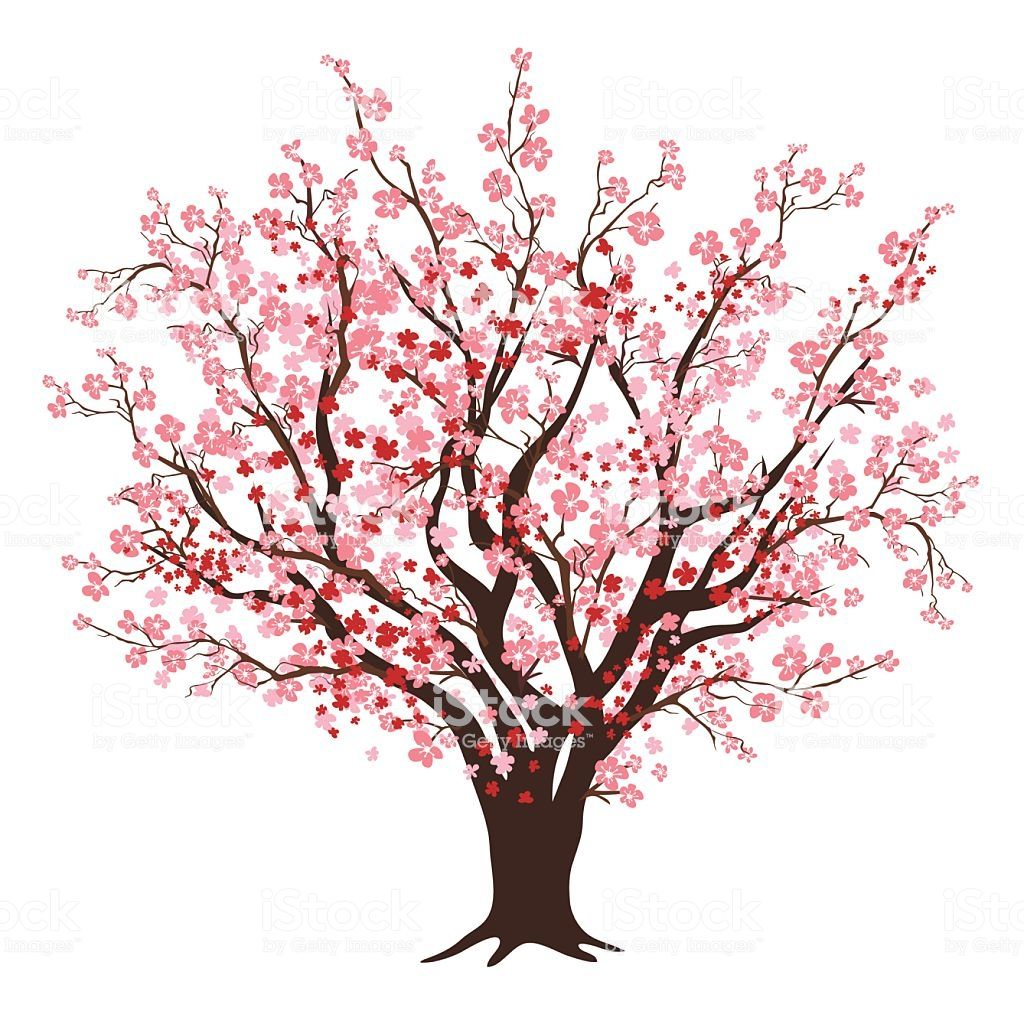 1024x1024 Pink And Red Cherry Blossom Tree In Full Bloom In Design