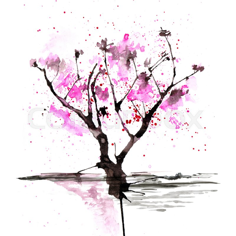 800x800 Sakura Tree In Japanese Painting Style Stock Image Colourbox