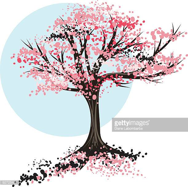 612x609 Cartoon Cherry Blossom Tree Clip Art