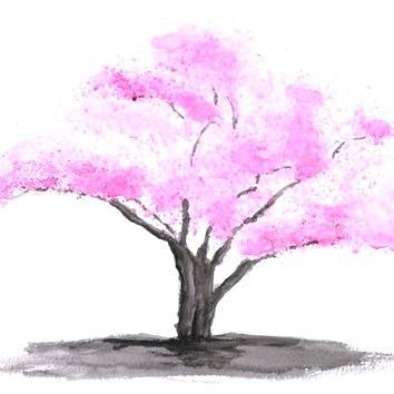 354x354 cherry blossom tree art cherry tree blossom cherry blossom tree