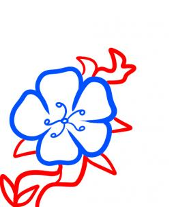 255x302 How To Draw How To Draw A Cherry Blossom For Kids