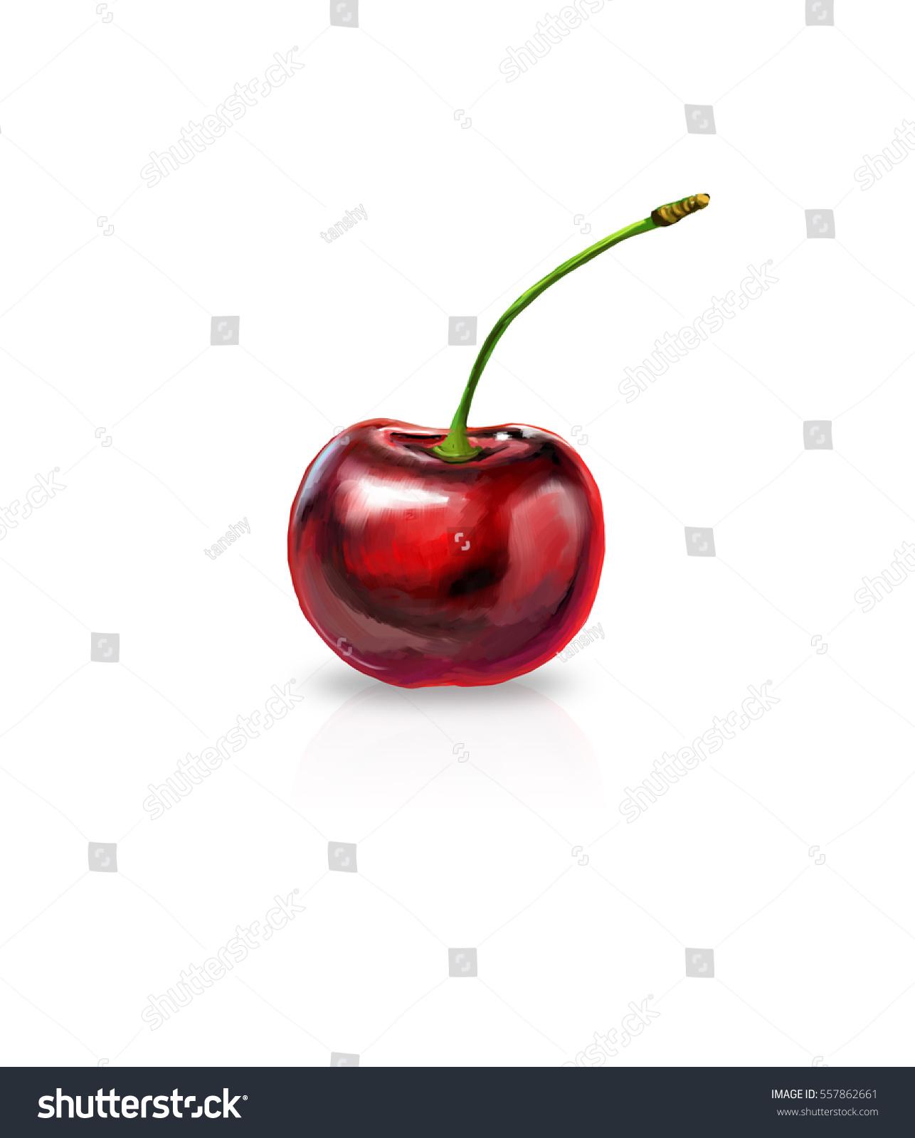 1286x1600 Cherry Drawing Images Blossom Step Tutorial Art Carmi Chaelinn