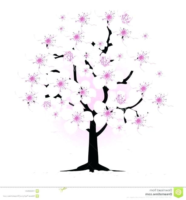 615x658 Drawing Cherry Blossom How To Draw Cherry Blossoms Combined