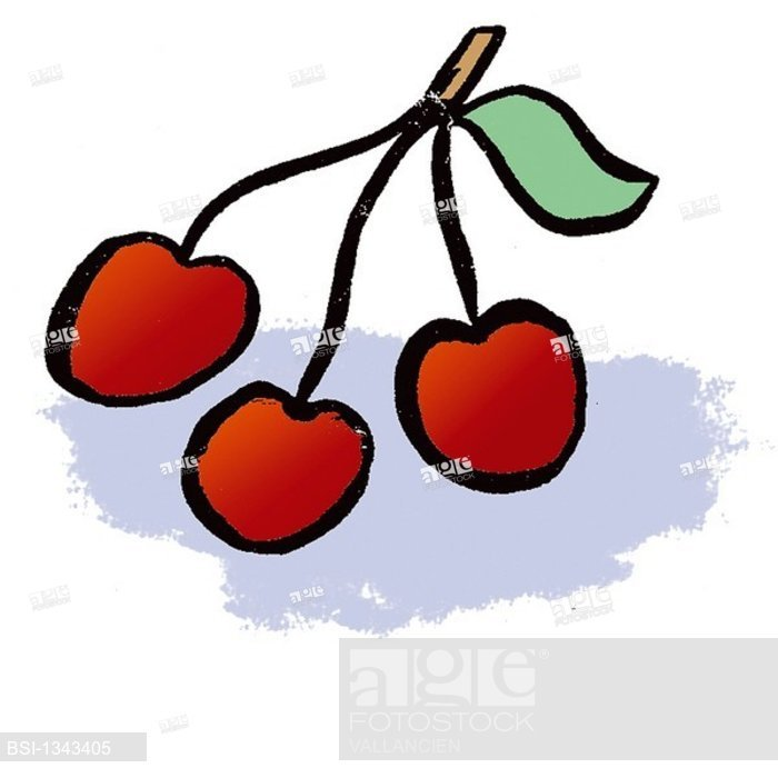 700x700 Cherry, Drawing, Stock Photo, Picture And Rights Managed Image