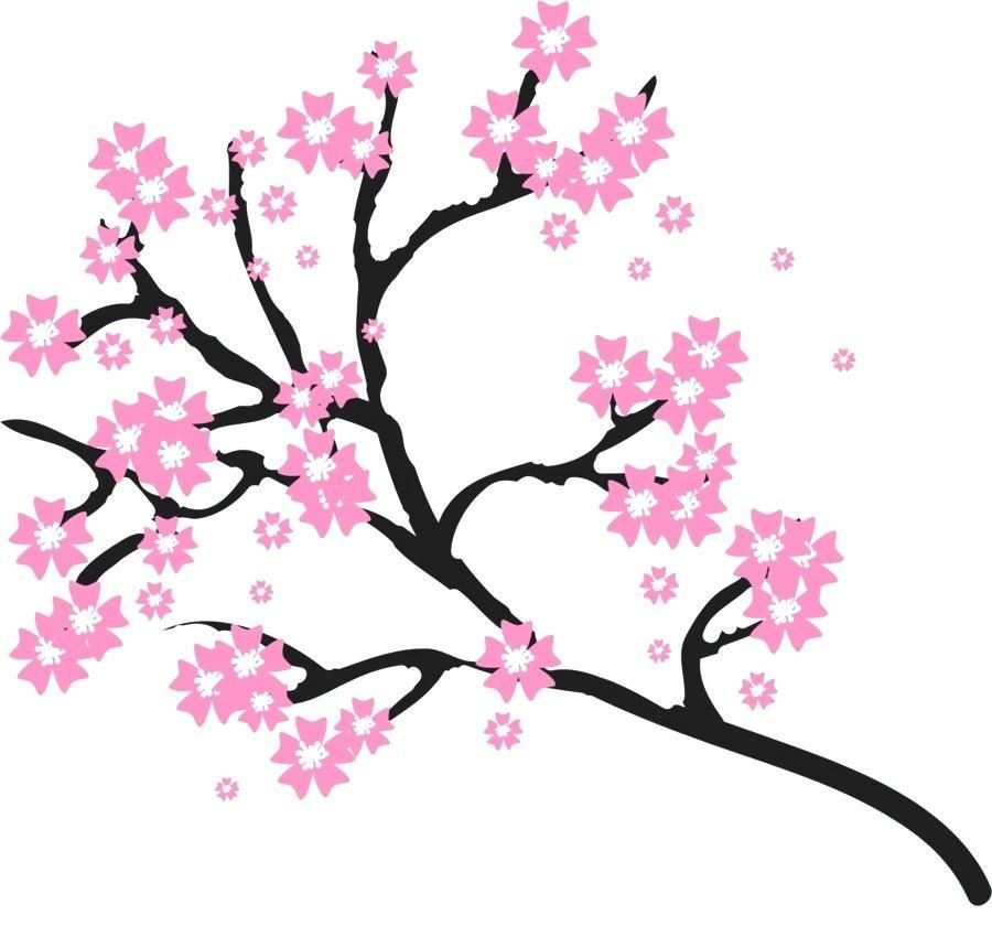 900x840 Cherry Blossom Drawings