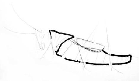 470x274 How To Draw A Grasshopper