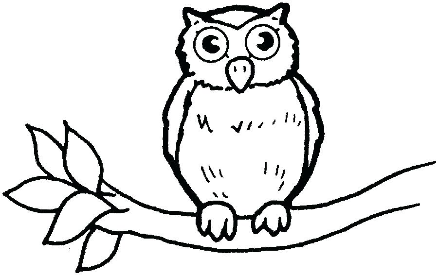 900x566 Owl Outline Animal Outline Drawings Owl Chest Tattoo Outline