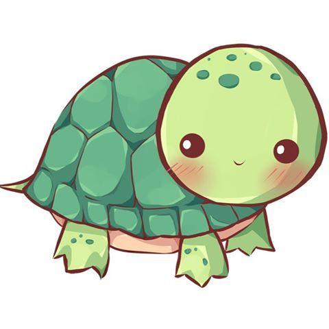 480x480 cute lil' turtle chibi turtle in kawaii turtle, cute