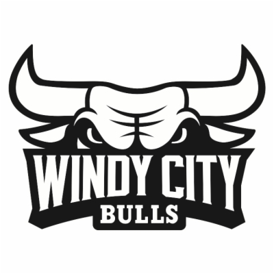 400x400 Result For Chicago Bulls Logo Free Png Download