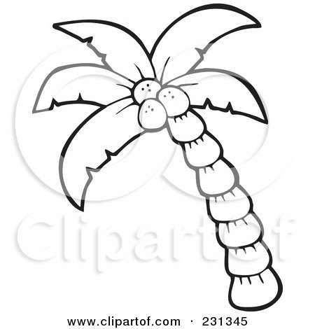 450x470 coconut tree coloring page tree coloring draw christmas tree
