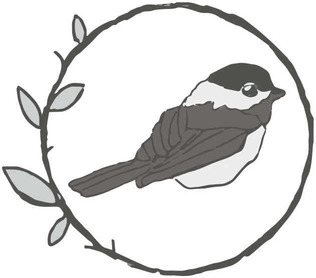 631x555 Collection Of Free Chickadee Drawing Cool Download On Ui Ex