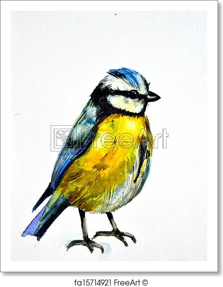450x580 Free Art Print Of Watercolor Drawing Of Cute Bird Freeart
