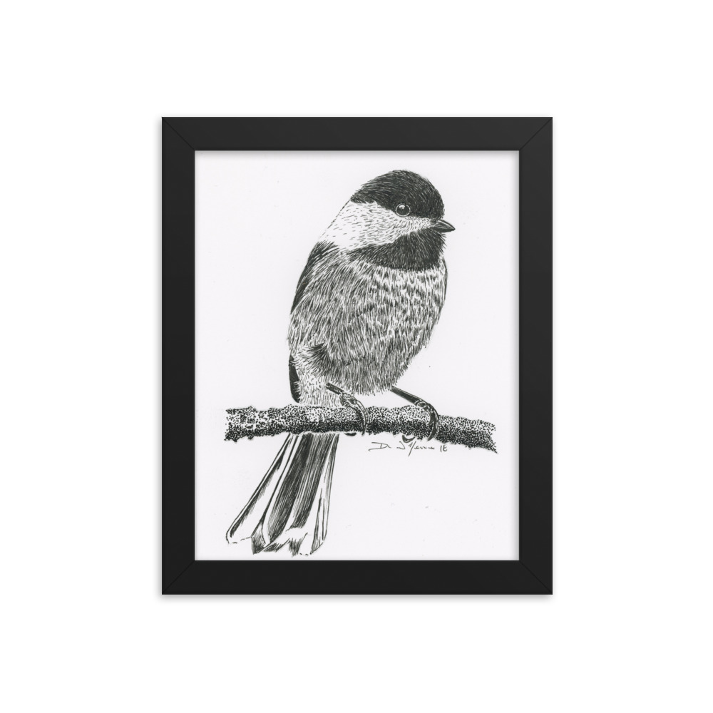 1000x1000 Taking A Break Black Capped Chickadee Framed Print