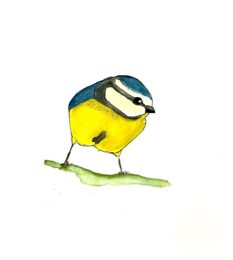 794x885 Beautiful Backyard Yellow And Blue Bird Lover Chickadee Etsy