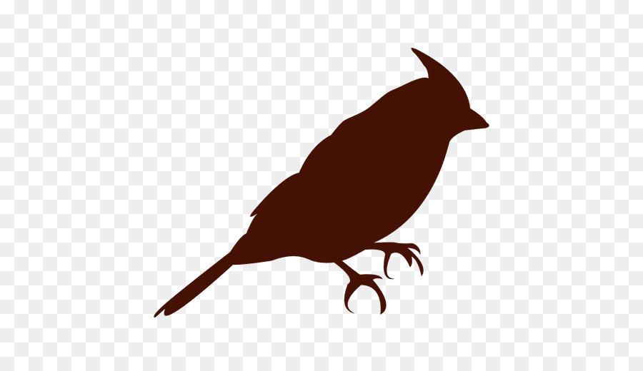 900x520 Bird, Silhouette, Drawing, Transparent Png Image Clipart Free