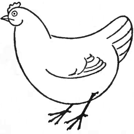 439x440 On Line Drawing Chicken