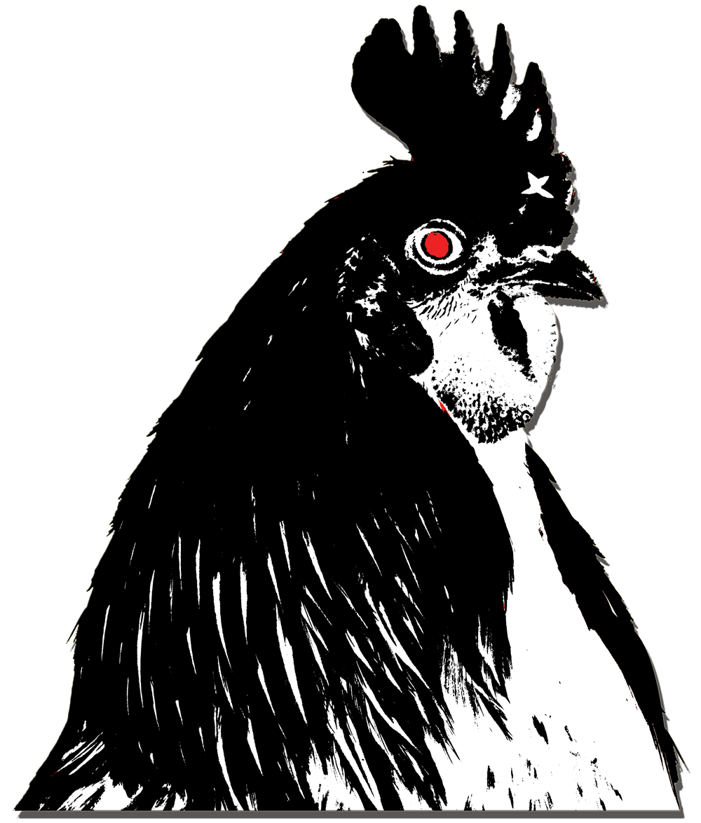 1000x1174 Stupid Drawing Chicken Transparent Png Clipart Free Download