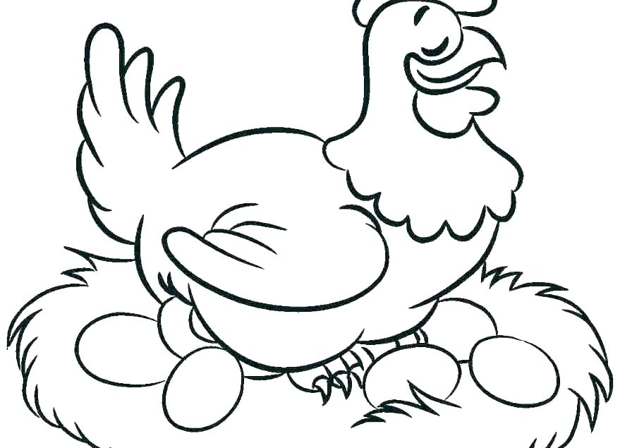 879x635 Drawing A Chicken