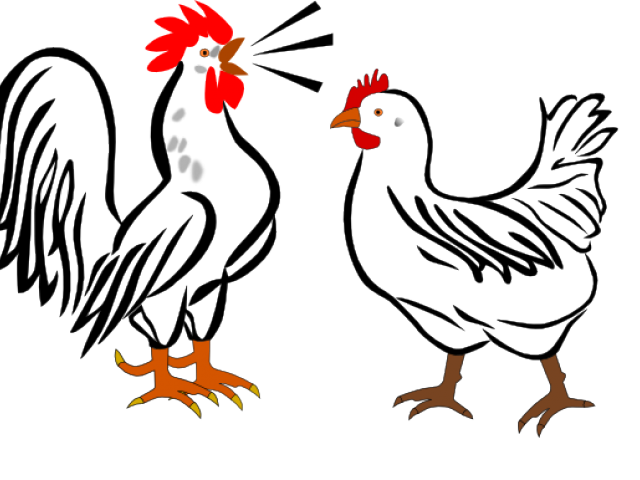 640x480 Collection Of Free Rooster Drawing Outline Download On Ui Ex