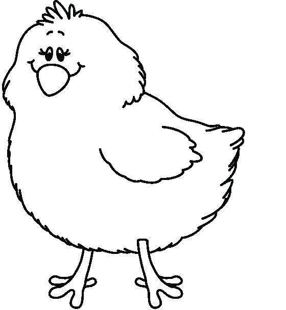 560x608 Baby Chick Outline Chicken Clip Art Coloring Drawing