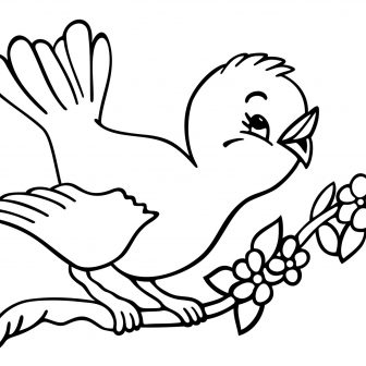 336x336 Chicken Drawing For Kid Basic An Easy Dead Adorable Animal Food