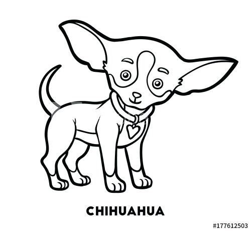 500x460 coloring book dog coloring book dog breeds chihuahua coloring book