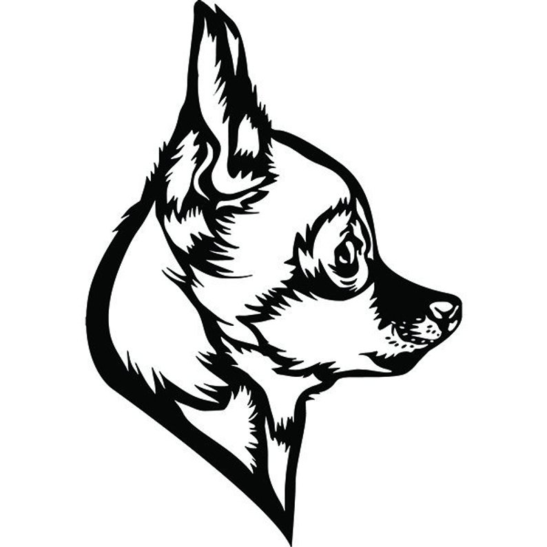 794x794 Chihuahua Dog Side Profile Puppy Breed K Animal Pet Etsy