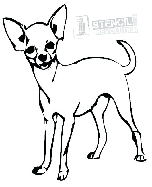 530x650 Dog Coloring Pages Chihuahua Chihuahua Coloring Pages Cute Baby