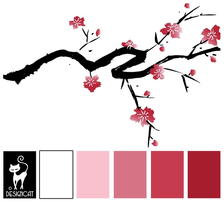 Chinese Cherry Blossom Drawing