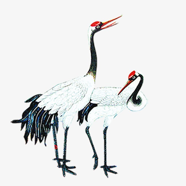 650x650 red crowned crane, red crowned crane, animal, crane png image