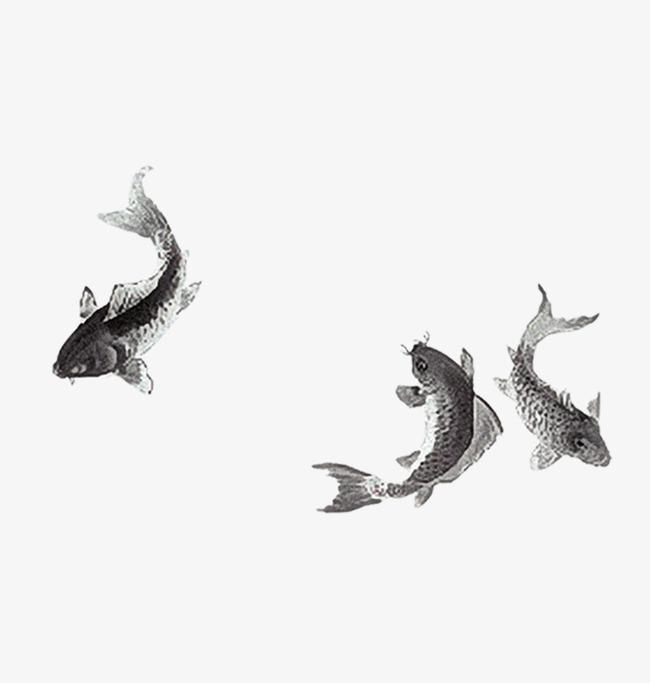 650x683 Carp Drawing Fish China For Free Download