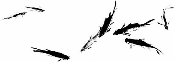 584x209 Chinese Fish Art Free Download