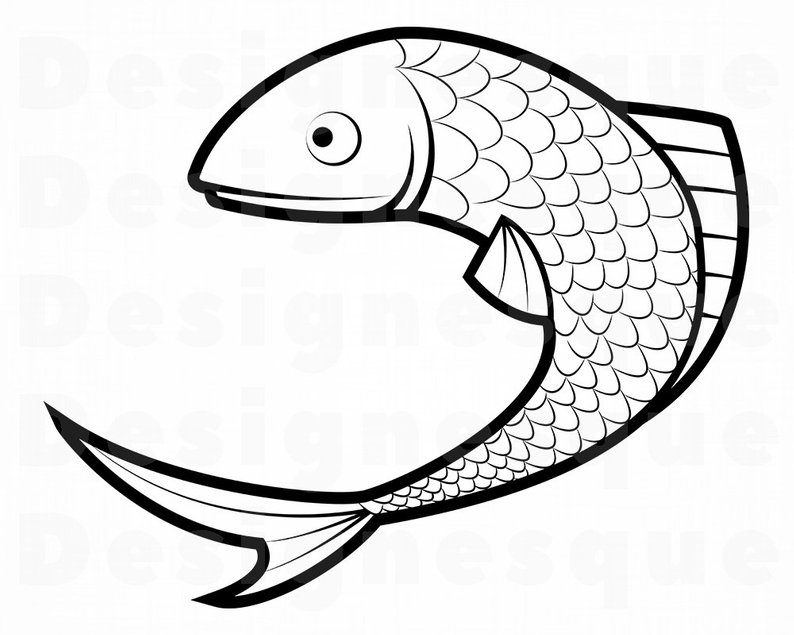 794x635 Fish Fish Fishing Sea Bass Fish Etsy
