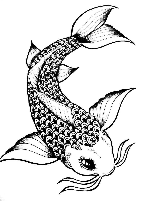 900x1214 Koi Fish Drawing Outline