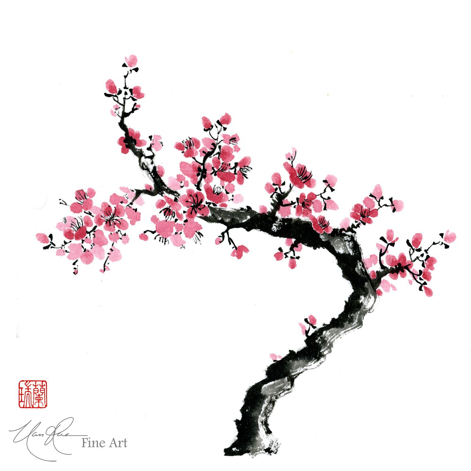 1543x1543 Cherry Blossom Tree Drawing Chinese