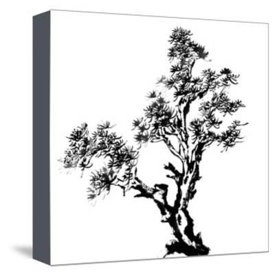 400x401 Chinese Traditional Ink Painting, Pine Tree On White Background