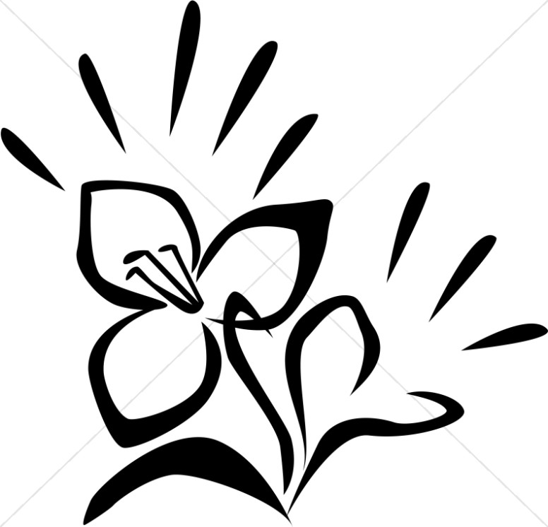 776x746 Radiant Easter Lily Drawing Church Flower Clipart