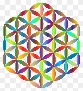 320x350 overlapping circles grid art drawing