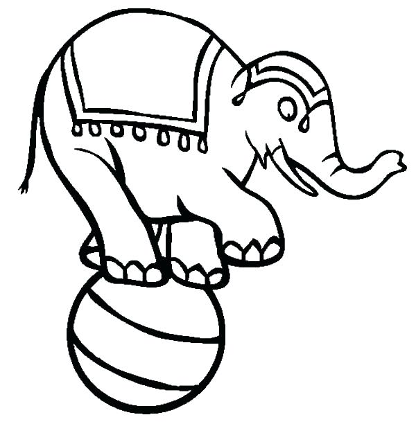 600x612 Elephant Drawing For Kids At Free For Personal Use Circus Elephant