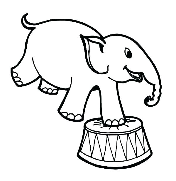 600x616 Elephant Printable Colouring Pages Collection Of Herd Of Elephants