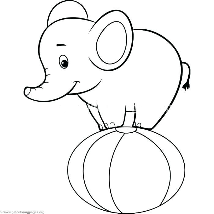 700x700 Circus Elephant Coloring Sheet