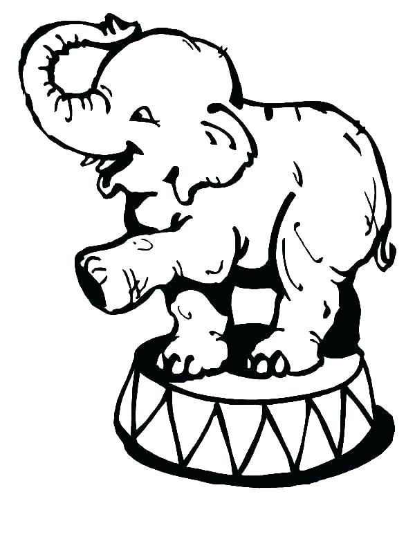 600x776 Circus Animals Coloring Pages Free Printable Circus Animal