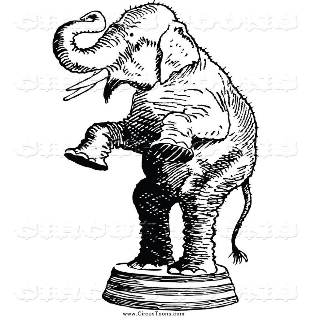1004x1024 Circus Clipart Circus Elephant