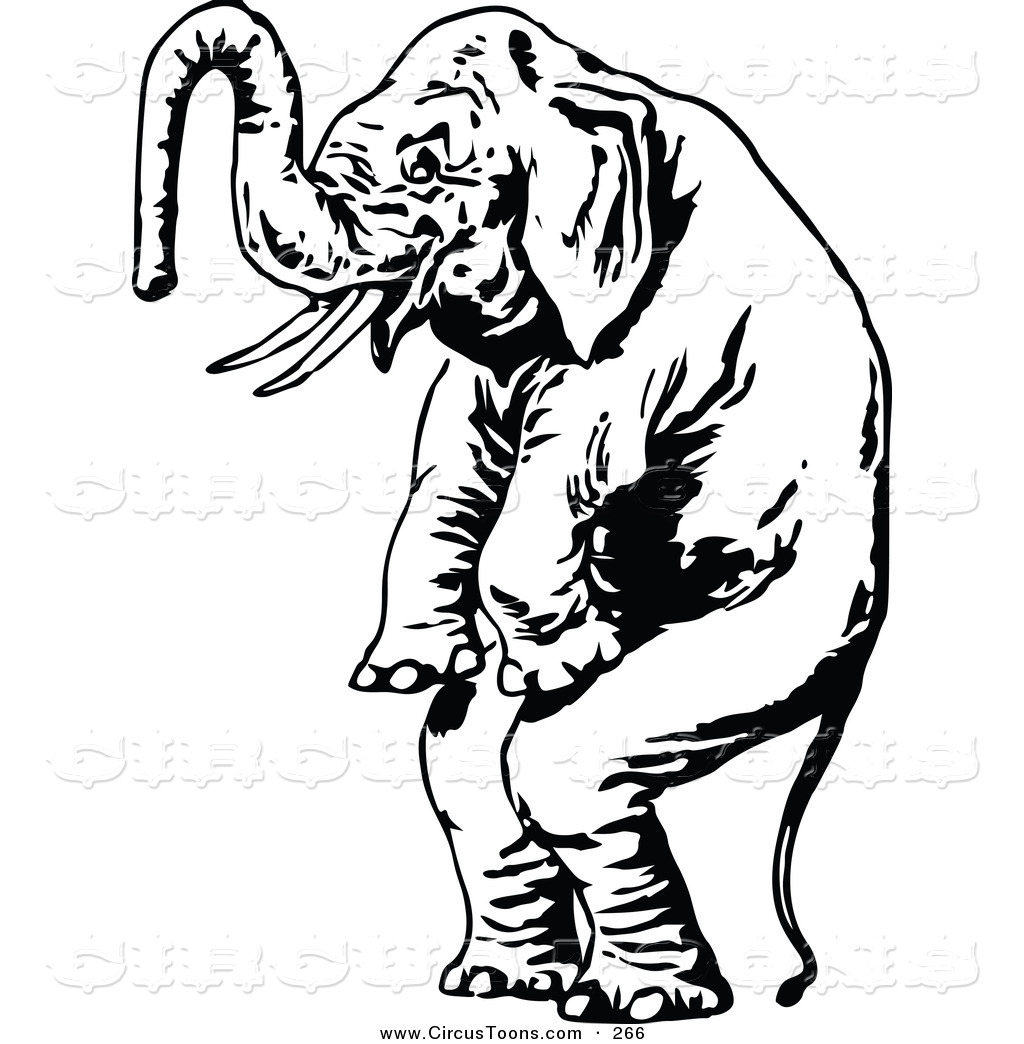 1024x1044 Vintage Circus Elephant Clipart