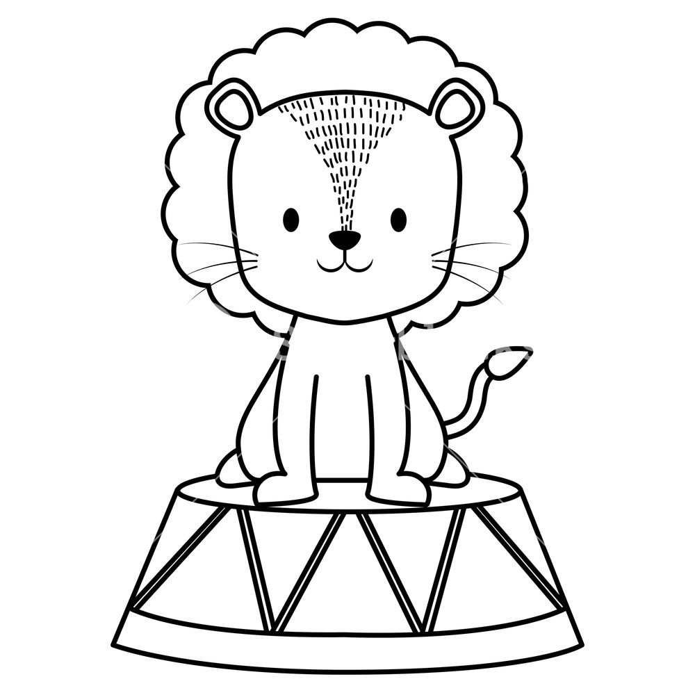 1000x1000 Cute Circus Lion In Stage Vector Illustration Design Royalty Free